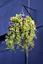 Hanging Basket With Blue Flowers 23-040