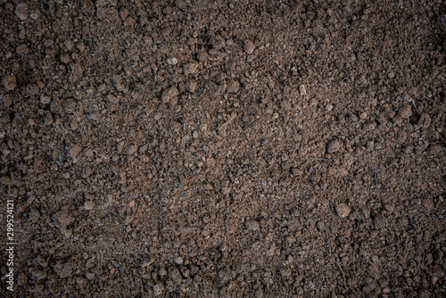 Soil background Wallpaper Mural