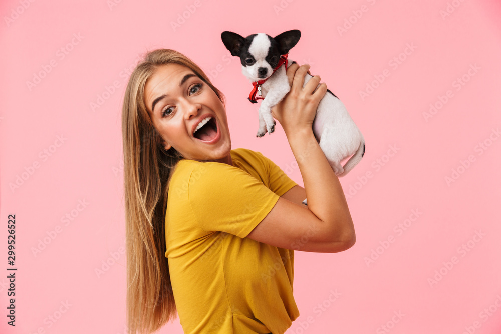 Fototapety, obrazy: Cute lovely girl playing with her pet chihuahua