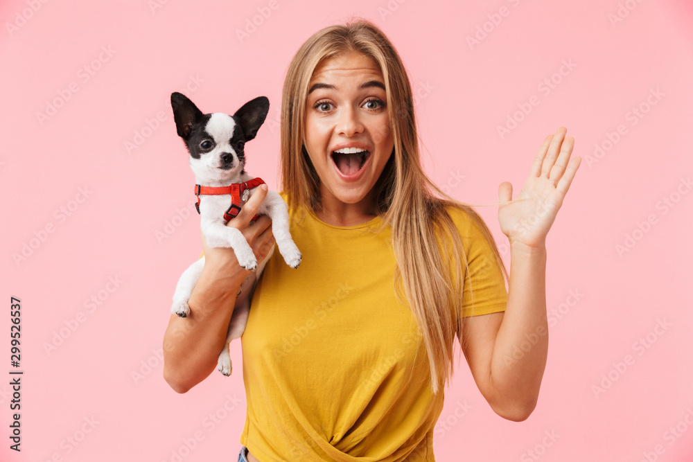 Fototapeta Cute lovely girl playing with her pet chihuahua