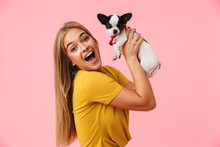 Cute Lovely Girl Playing With Her Pet Chihuahua