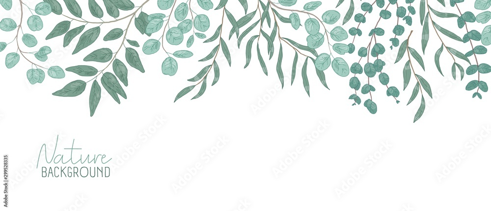 Fototapeta Nature vector realistic background. Foliage backdrop with place for text. Botanical composition, shrub branches with green leaves. Natural leafage, frondage. Floral hand drawn illustration.