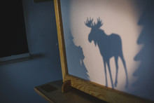 Teacher Do A Shadow Play Moose In Kindergarten Or Preschool. Child Play Concept Shadow Pantomime Shadowgraph For Children