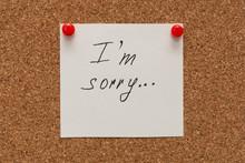 Apologize, I Am Sorry Inscript...