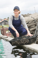 Oyster Farm Worker Posing With...