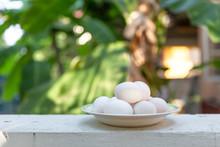 White Egg On White Cement Fenc...