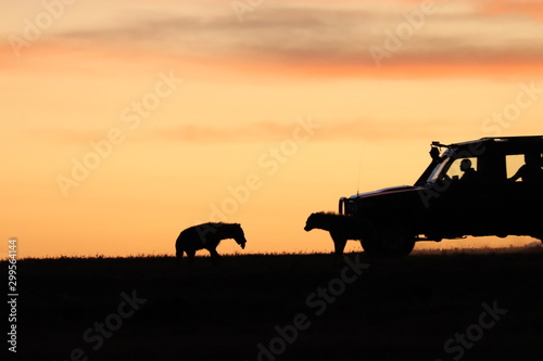 Deurstickers Hyena Silhouettes of hyenas with a tour car in the african savannah.