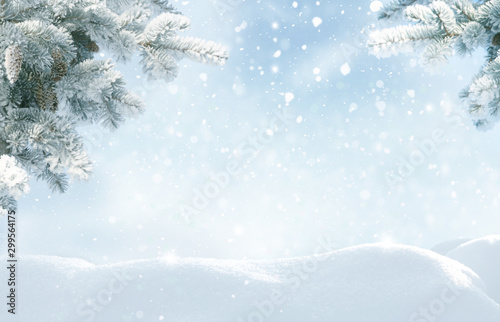 Cadres-photo bureau Blanc Snowfall in winter forest.Beautiful landscape with snow covered fir trees and snowdrifts.Merry Christmas and happy New Year greeting background with copy-space.Winter fairytale.