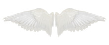 Wings Isolated On White Backgr...