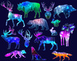 Silhouettes of animals with space galaxy background