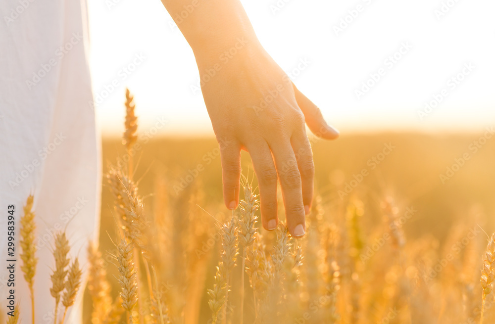 Fototapety, obrazy: harvesting, nature, agriculture and prosperity concept - young woman on cereal field touching ripe wheat spickelets by her hand