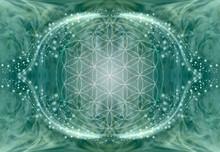 The Flower Of Life Mandala Bac...