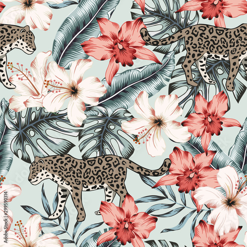 plakat Tropical leopard animal, monstera, banana palm leaves, pink orchid, hibiscus flowers background. Vector seamless pattern. Exotic jungle illustration. Summer beach floral design. Paradise nature