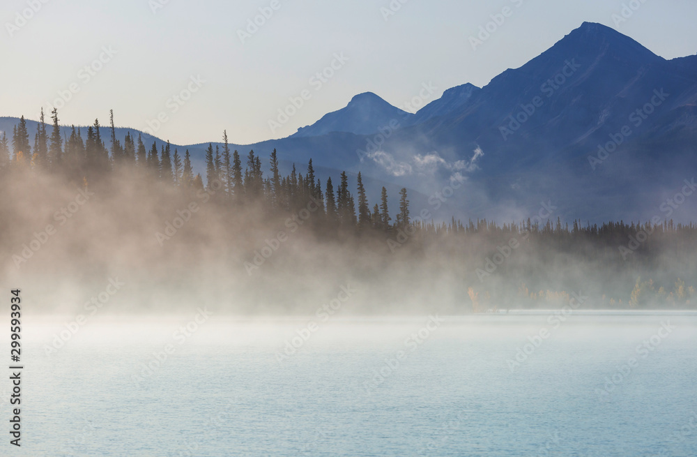 Fototapety, obrazy: Fog on the lake