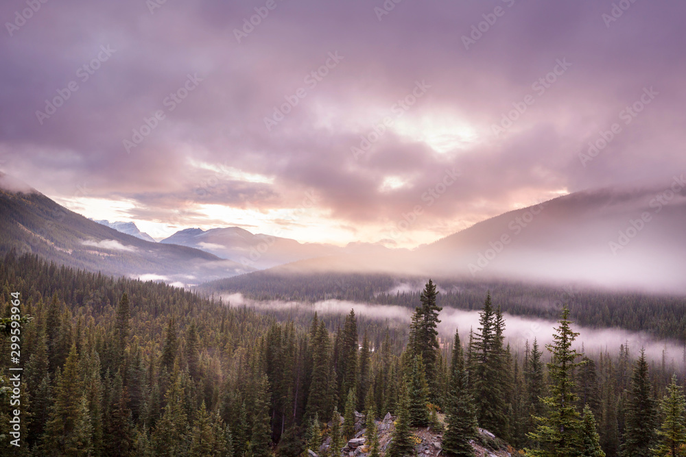 Fototapety, obrazy: Fog in the mountains
