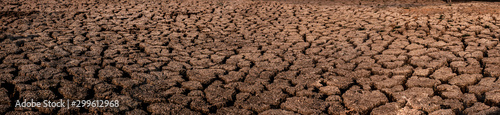 Fotografia Cracked and dry soil in arid areas landscape