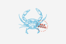 Image Of Blue Crab, Drawn By G...