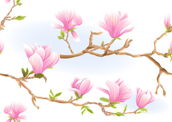 Magnolia tree branch with flowers. Seamless pattern, background. Colored vector illustration. Isolated on white background..