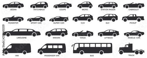 Car body types. Car type vector. Fototapet