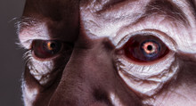 Close-up Of The Creepy Eyes Of...
