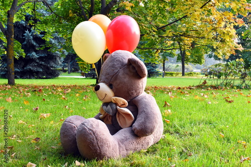 Big teddy bear with balloons on the grass Wallpaper Mural
