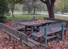 Autumn Landscape In A Colorful...