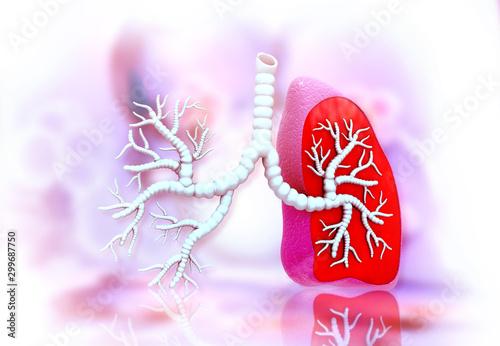 Fényképezés Human lungs anatomy. 3d illustration ..