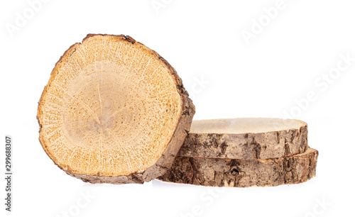 circular piece of wood section texture isolated on white background Tableau sur Toile