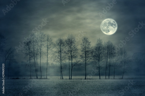 full moon and tree Tableau sur Toile