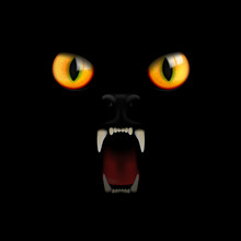 Eyes And Teeth Of A Black Cat On A Black Background. Vector Illustration.