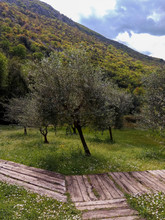 Nature Park With River And Restaurant In The Morin, Montenegro