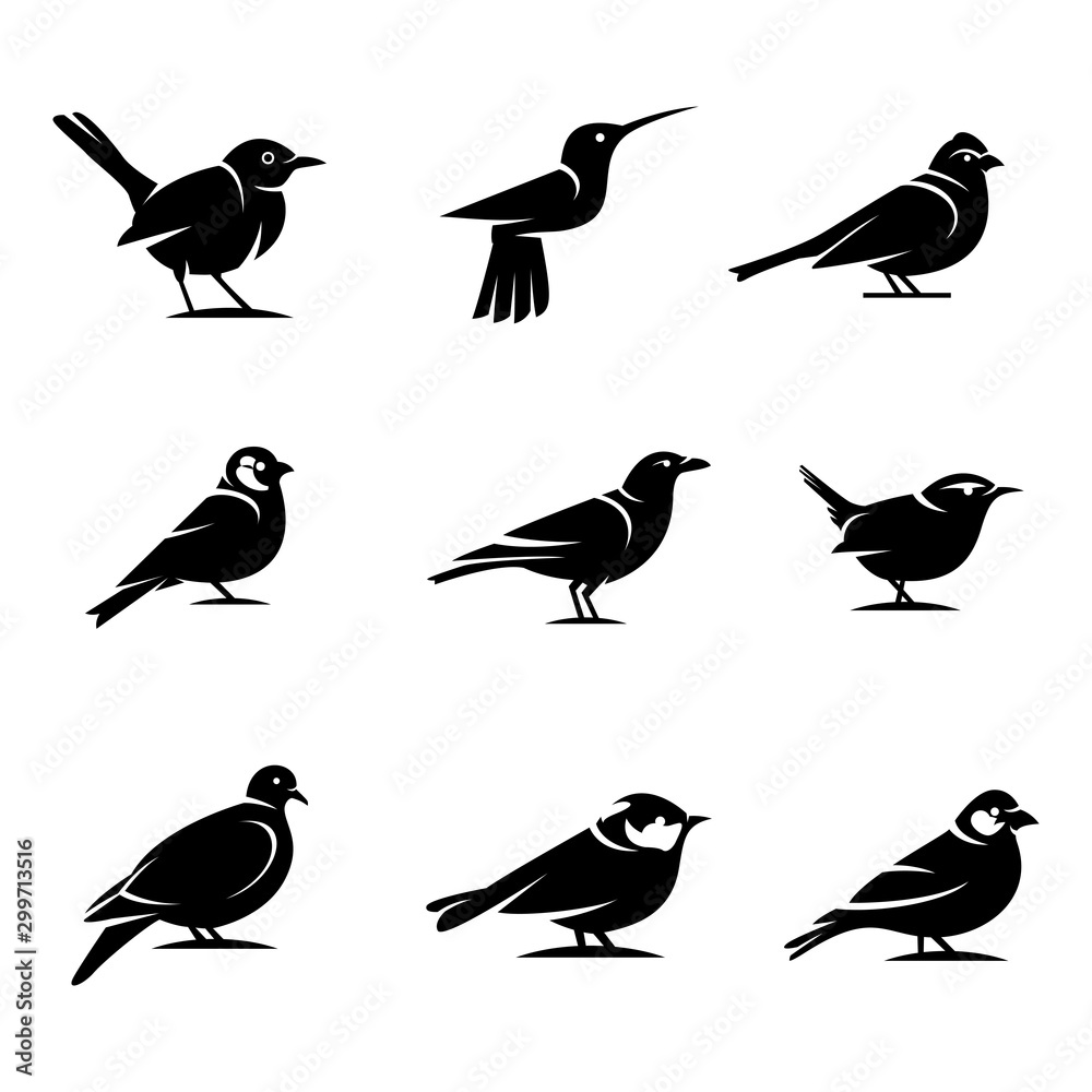 Fototapeta Bird silhouette Designs Concept illustration Vector Template.