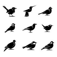 Bird Silhouette Designs Concep...