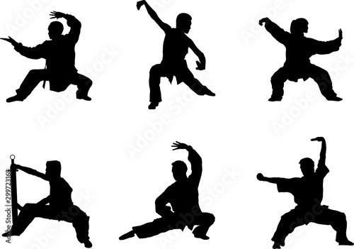 Wushu, kung fu, Taekwondo Wallpaper Mural