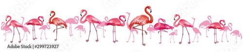 Horizontal background with flamingoes