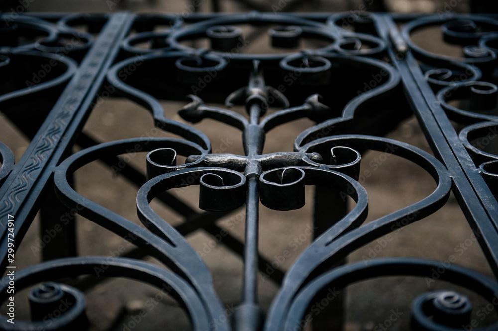 Fototapeta metal gate,construction of metal gate,putting a patina on the metal gate