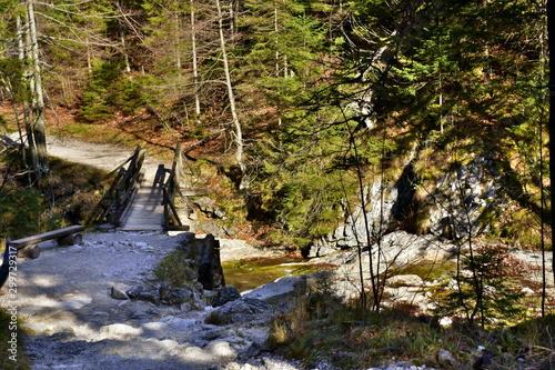 La pose en embrasure Rivière de la forêt Gorge in the Western Tatras, White Valley, Dolina Bialego