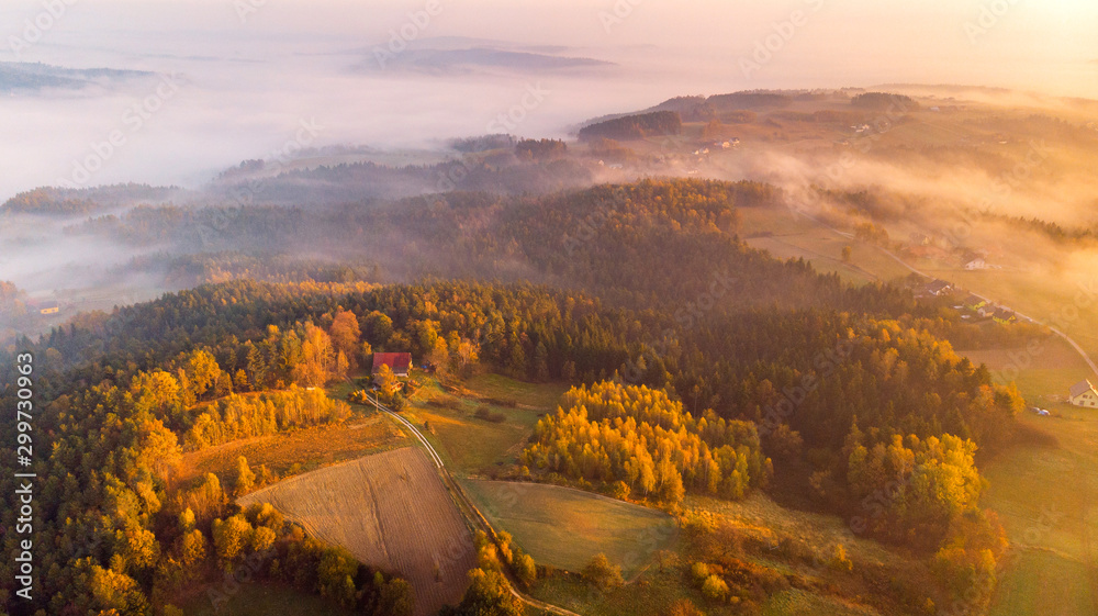 Fototapeta Colorful Sunrise over Forest and Countryside in Poland. Aerial Drone View