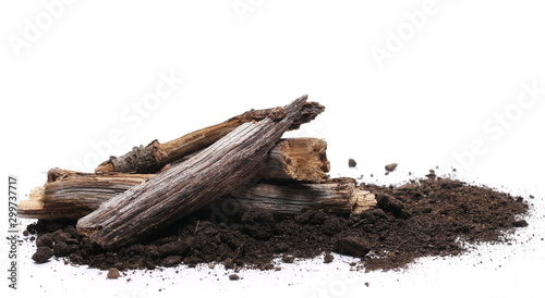 Decorative dry rotten branches in soil, dirt pile, wood for campfire isolated on white background