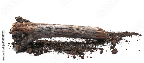 Decorative dry rotten branch in soil, dirt pile, wood for campfire isolated on white background