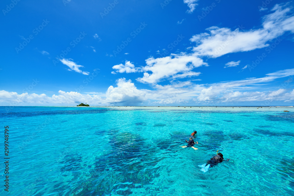 Fototapety, obrazy: Snorkeling in clear water