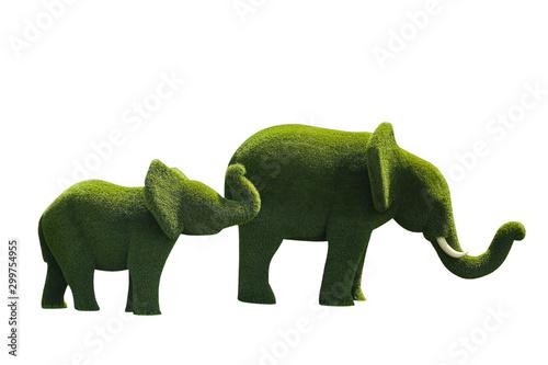 Beautiful elephant shaped topiaries isolated on white. Landscape gardening - 299754955