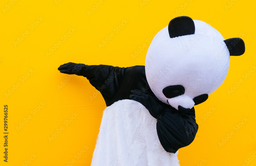 Fototapeta Person with panda costume dancing dab dance. Mascot character lifestyle concept on colored background