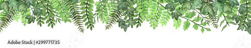 Photo Long banner with hand drawn watercolor tropical fern leaves