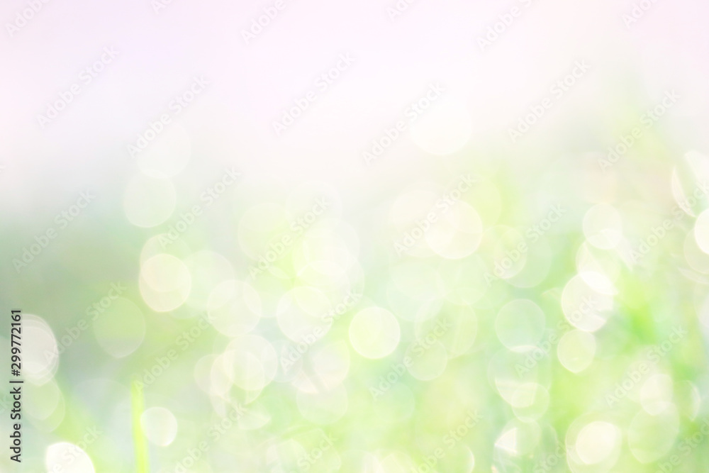 Fototapety, obrazy: green white abstract blur colorful leaves flower tree in garden