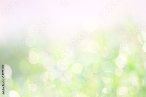 Poster Pres, Marais green white abstract blur colorful leaves flower tree in garden