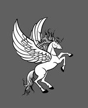 Hand-drawn White Pegasus Reared Up With Wings Isolated
