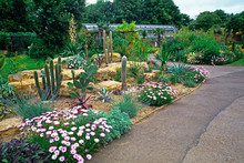 A Dry Cactus Garden At A Cotswold Garden And Wildlife Park
