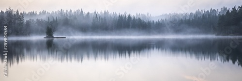 Obraz Panoramic shot of the sea reflecting the trees on the shore with a foggy background - fototapety do salonu