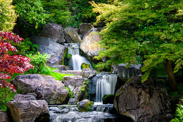 Obraz na Szkle Popularne Waterfall long exposure with maple trees in Kyoto Japanese green Garden in Holland Park green summer zen lake pond water in London, UK